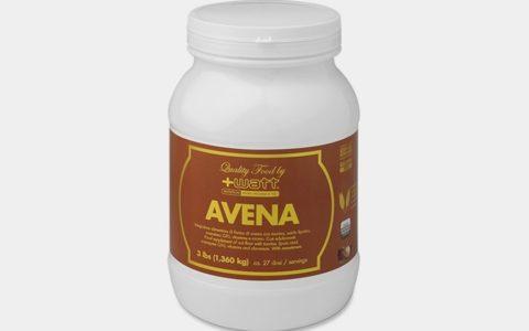 AVENA QUALITY FOOD +WATT